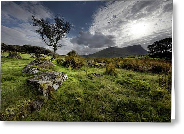 Greeting Card featuring the photograph Marshland On Route To Snowdon Mountaintop by Richard Wiggins