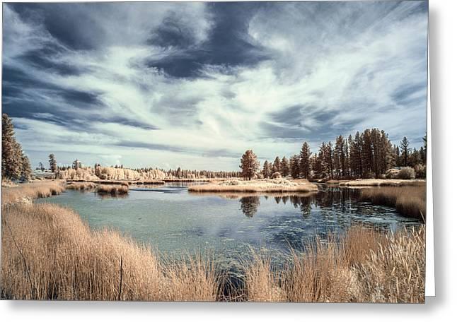 Marshlands In Washington Greeting Card by Jon Glaser