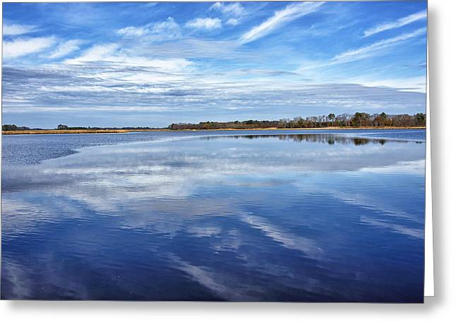 Greeting Card featuring the photograph Maryland - Blackwater National Wildlife Refuge by Brendan Reals