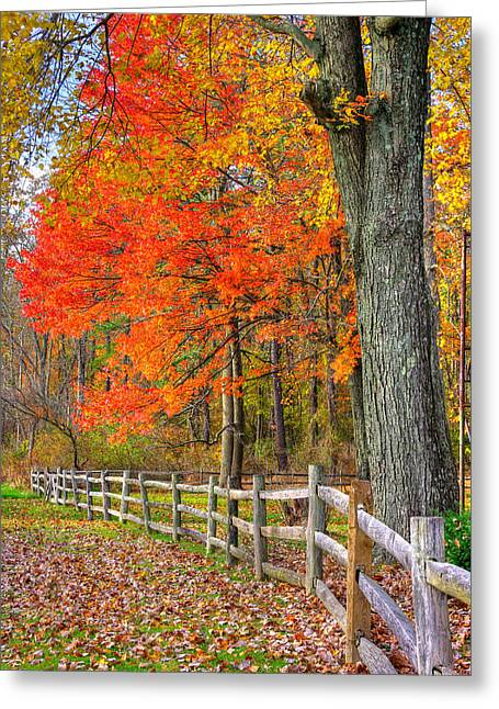 Maryland Country Roads - Autumn Colorfest No. 11 - Eylers Valley Catoctin Mountains Frederick County Greeting Card by Michael Mazaika