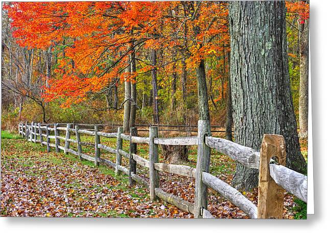 Maryland Country Roads - Autumn Colorfest No. 12 - Eylers Valley Catoctin Mountains Frederick County Greeting Card by Michael Mazaika