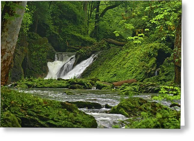 Greeting Card featuring the photograph Massie Creek Falls by Rick Hartigan