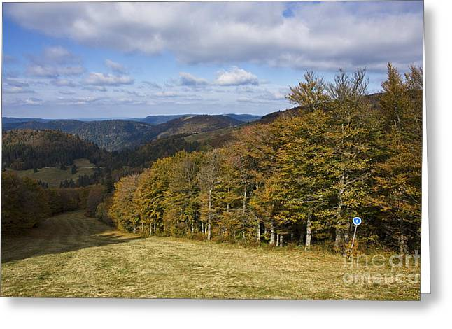Massif Des Vosges, France Greeting Card by Jean-Louis Klein & Marie-Luce Hubert