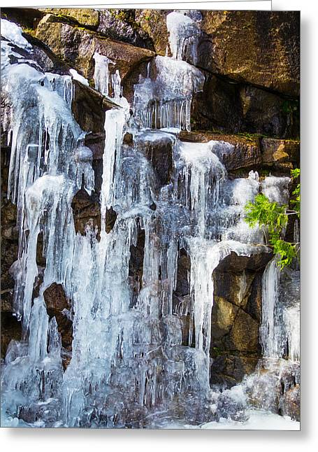 Massive Icicles Greeting Card by Garry Gay