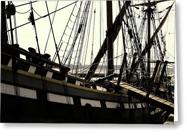 Master And Commander V2 Greeting Card by Douglas Barnard
