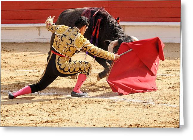 Mexican Fighters Greeting Cards - Matador Kneeling with Bull Greeting Card by Clarence Alford