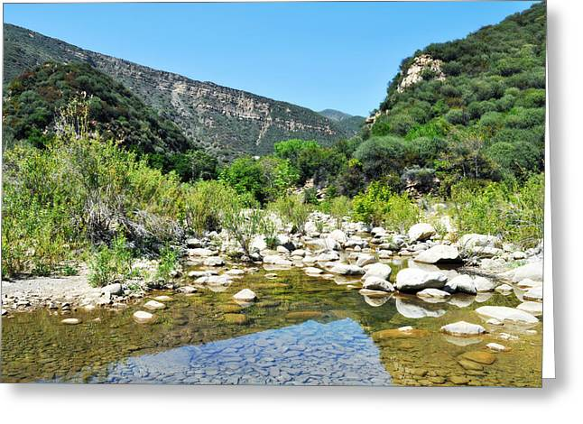 Greeting Card featuring the photograph Matilija Hot Springs by Kyle Hanson