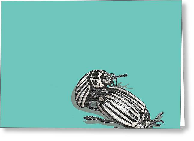 Greeting Card featuring the painting Mating Beetles by Jude Labuszewski