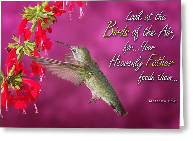 Matthew 6 26 Greeting Card