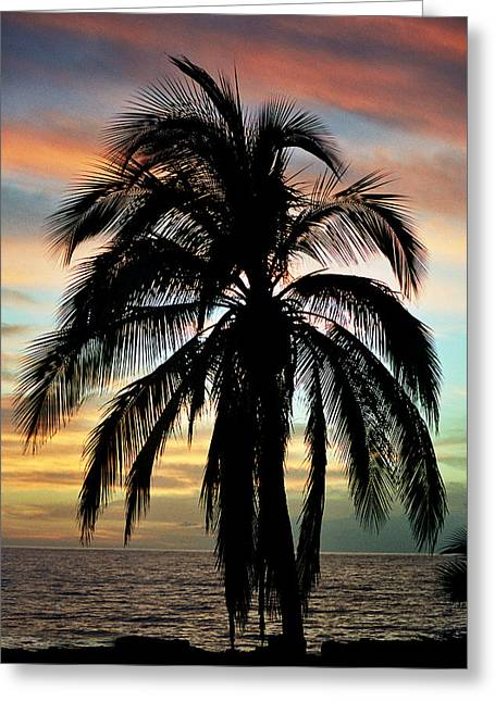 Maui Hawaii Sunset Palm Greeting Card by Pierre Leclerc Photography
