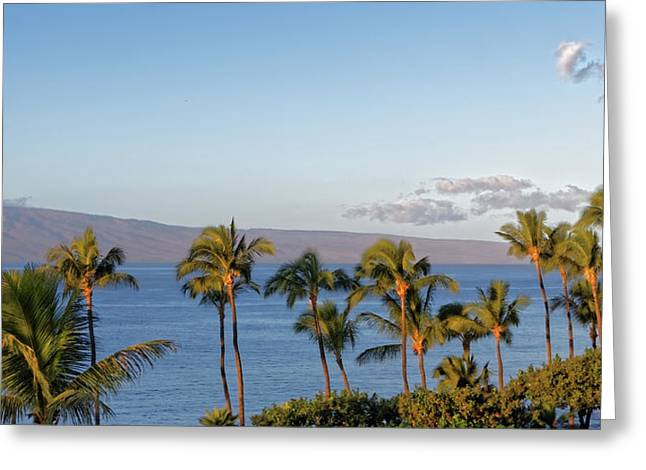 Greeting Card featuring the photograph Maui Palms by Lars Lentz