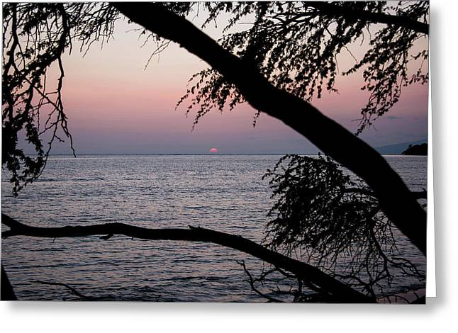 Greeting Card featuring the photograph Maui Sunset by Jennifer Ancker