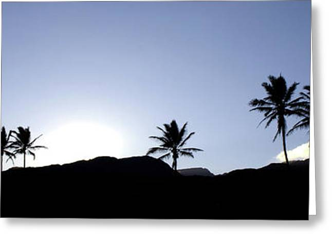 Maui Sunset Palm Tree Silhouettes Greeting Card by Denis Dore