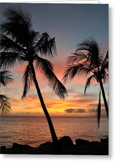 Lahaina Photographs Greeting Cards - Maui Sunset Palms Greeting Card by Kelly Wade