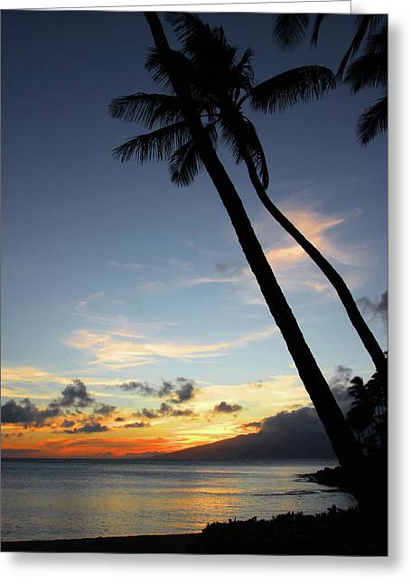 Maui Sunset With Palm Trees Greeting Card