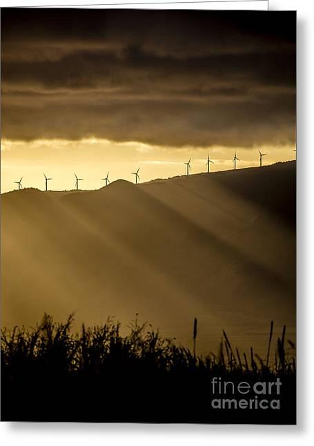 Maui Wind Farm Sunset Greeting Card