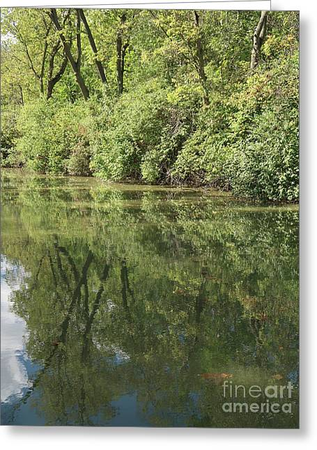 Maumee And Erie Canal Reflected Greeting Card