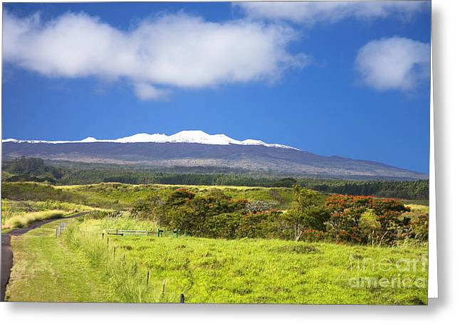 Mauna Kea Greeting Card by Peter French - Printscapes