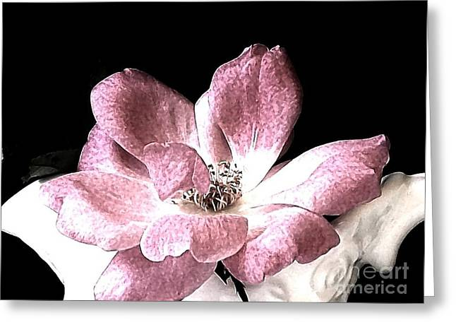 Mauve Rose Greeting Card by Marsha Heiken