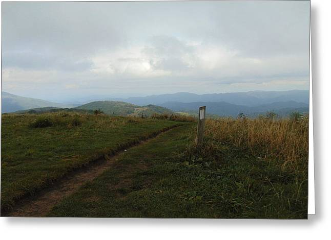 Max Patch Greeting Card