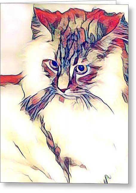 Max The Cat Greeting Card