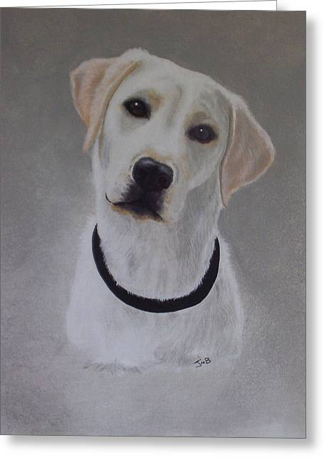 Maxie Greeting Card by Janice M Booth