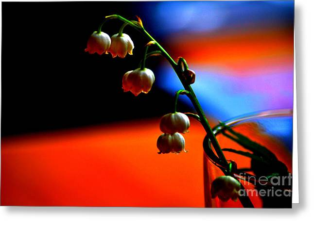 Greeting Card featuring the photograph May Flowers by Susanne Van Hulst