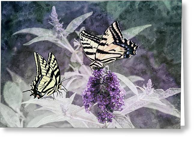 Greeting Card featuring the photograph May I Join You by Diane Schuster
