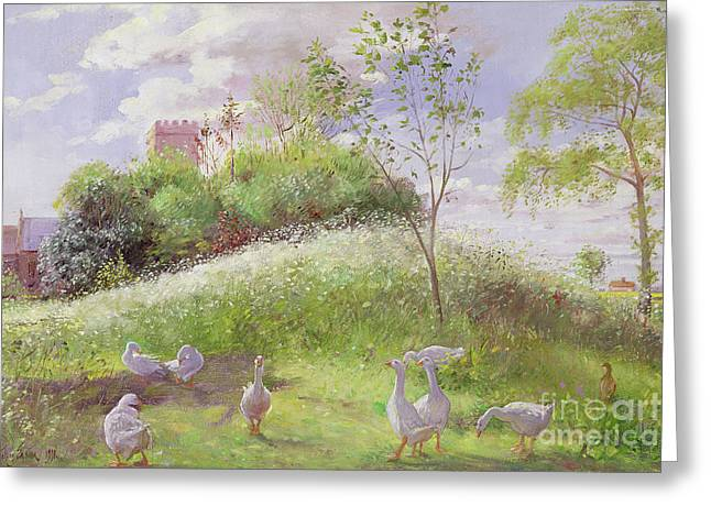 May Mount Greeting Card by Timothy Easton