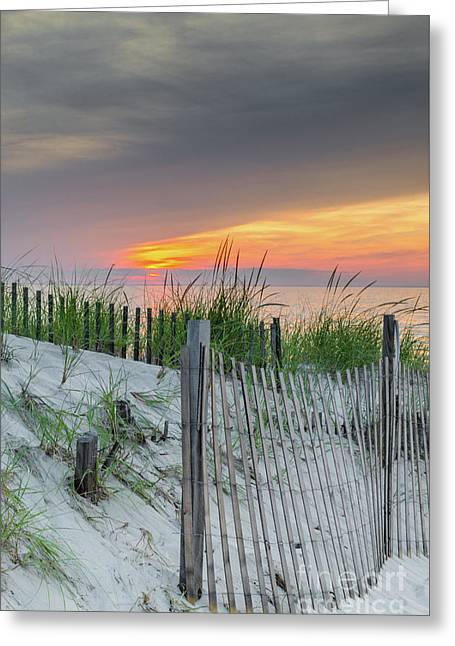 Greeting Card featuring the photograph Mayflower Beach by Mike Ste Marie