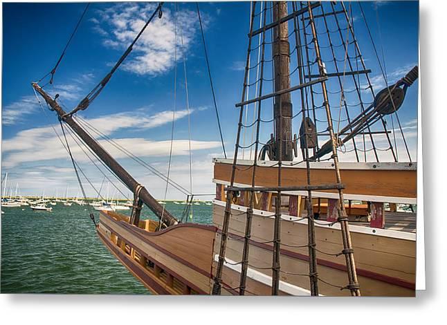 Mayflower Greeting Card by Mick Burkey