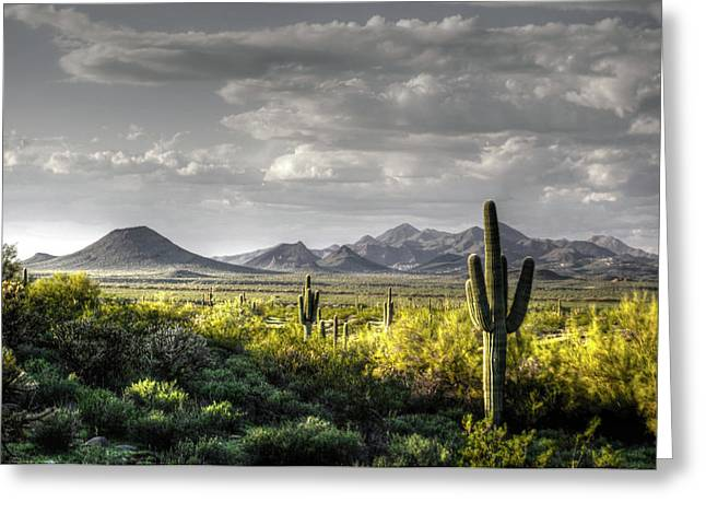 Mc Dowell Mountains - Hdr Greeting Card by Tam Ryan