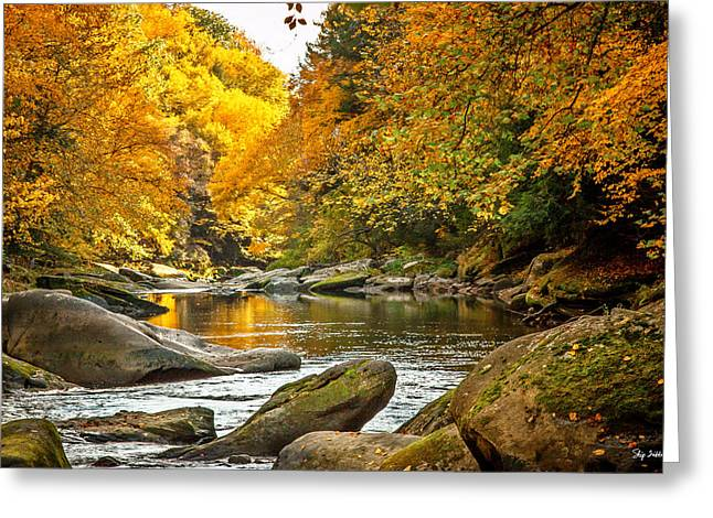 Mcconnell's Mill State Park Greeting Card by Skip Tribby