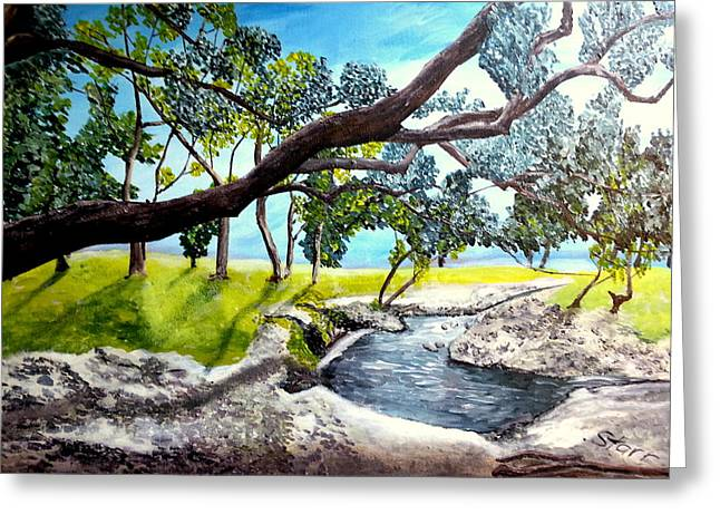 Mccoy Creek Greeting Card by Irving Starr