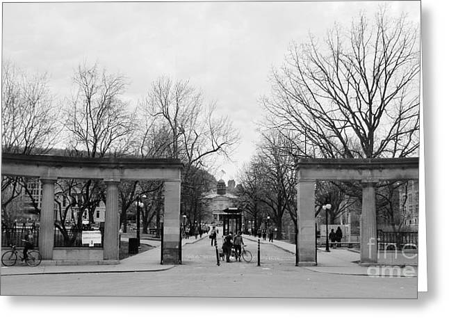 Mcgill Gates Greeting Card