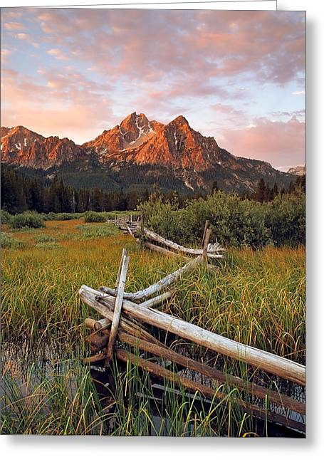 Mcgown Peak Gold Greeting Card by Leland D Howard