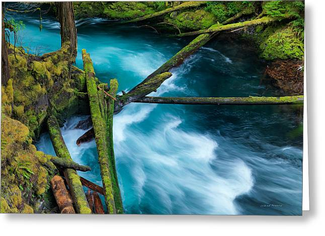Mckenzie River Color Greeting Card by Leland D Howard