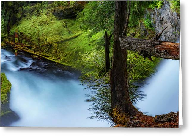 Greeting Card featuring the photograph Mckenzie River From Sahalie Falls by Cat Connor