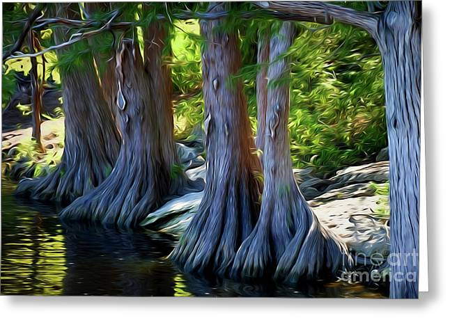 Mckinney Falls State Park - Texas 12118-2 Greeting Card