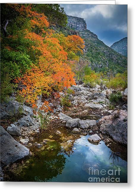 Mckittrick Canyon Greeting Card by Inge Johnsson