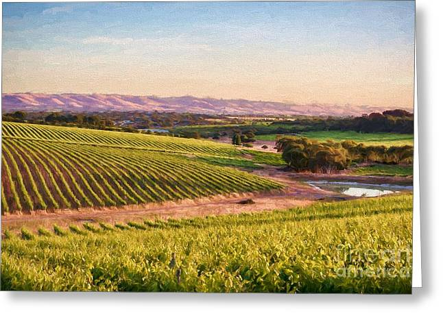 Mclaren Vale Magic Ed Greeting Card by Ray Warren