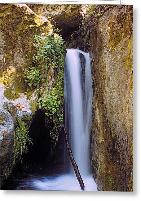 Greeting Card featuring the photograph Mcway Creek Falls 2 by Gary Brandes