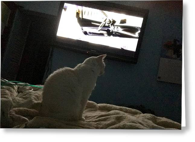 Mr Cat Watches Tv Greeting Card by Lenore Senior