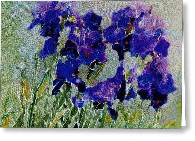 Greeting Card featuring the photograph Meadow Iris by Linde Townsend