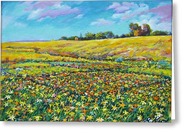 Meadow Of The Quilted Lilies Greeting Card by Richard Knox