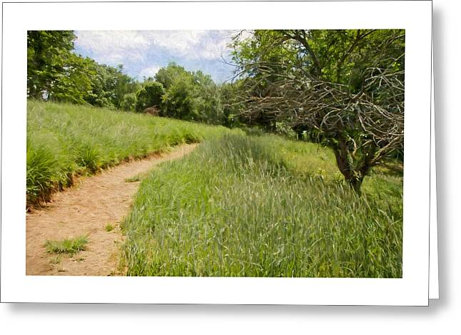 Meadow Path Greeting Card by Julie Wagaman