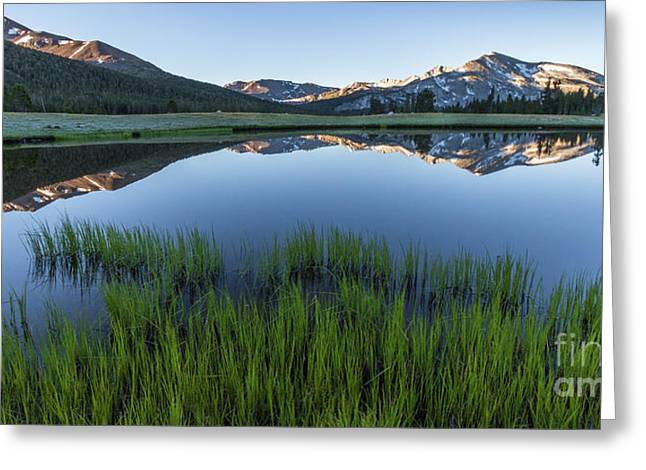 Meadow Reflections  Greeting Card