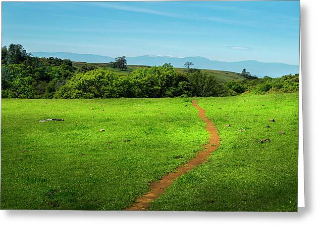 Meadow Trail Greeting Card by Frank Wilson