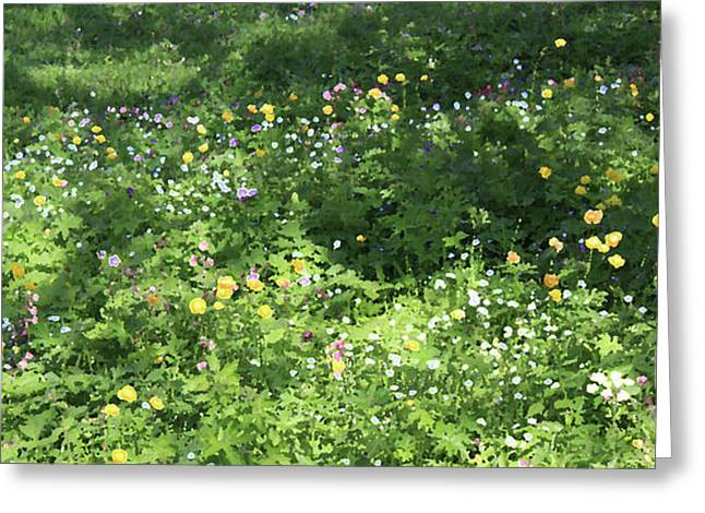Meadow With Spring Flowers Greeting Card