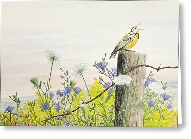 Meadowlark Greeting Card by Steve Mountz